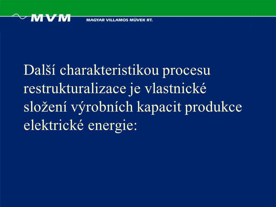 Další charakteristikou procesu restrukturalizace je vlastnické složení výrobních kapacit produkce elektrické energie: