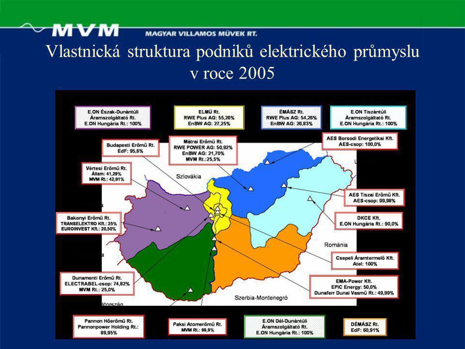 Vlastnická struktura podniků elektrického průmyslu v roce 2005