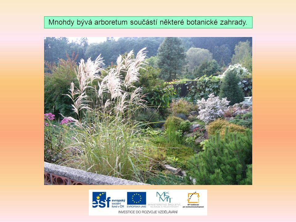 Mnohdy bývá arboretum součástí některé botanické zahrady.
