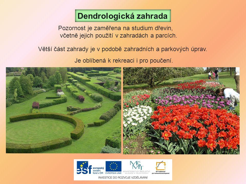 Dendrologická zahrada Je oblíbená k rekreaci i pro poučení. Pozornost je zaměřena na studium dřevin, včetně jejich použití v zahradách a parcích. Větš