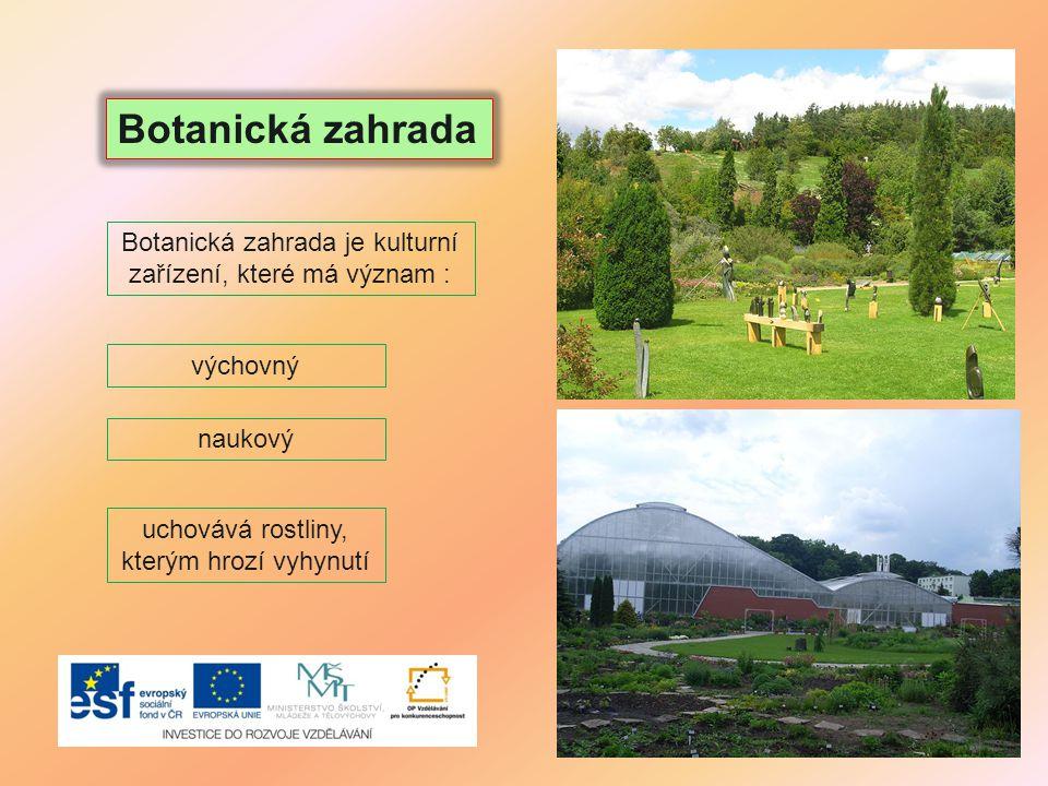 Botanická zahrada uchovává rostliny, kterým hrozí vyhynutí Botanická zahrada je kulturní zařízení, které má význam : výchovný naukový