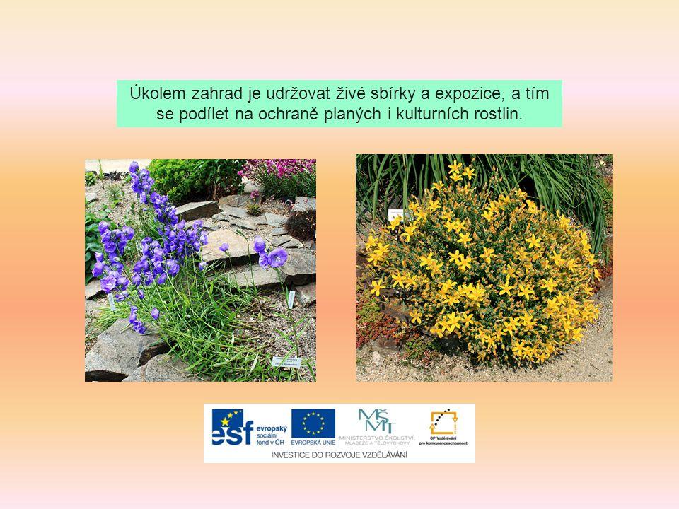 Hlavním úkolem všech botanických zahrad je ochrana rostlin, kterým hrozí vyhynutí.