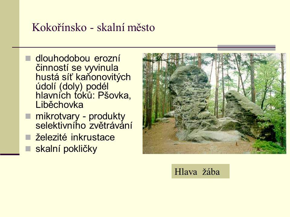 Kokořínsko - skalní město dlouhodobou erozní činností se vyvinula hustá síť kaňonovitých údolí (doly) podél hlavních toků: Pšovka, Liběchovka mikrotva