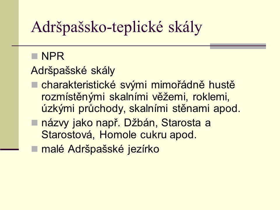 Adršpašsko-teplické skály NPR Adršpašské skály charakteristické svými mimořádně hustě rozmístěnými skalními věžemi, roklemi, úzkými průchody, skalními