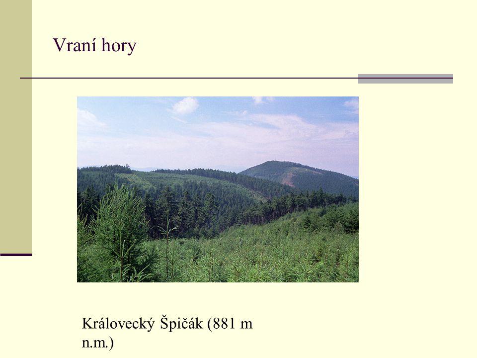 Vraní hory Královecký Špičák (881 m n.m.)