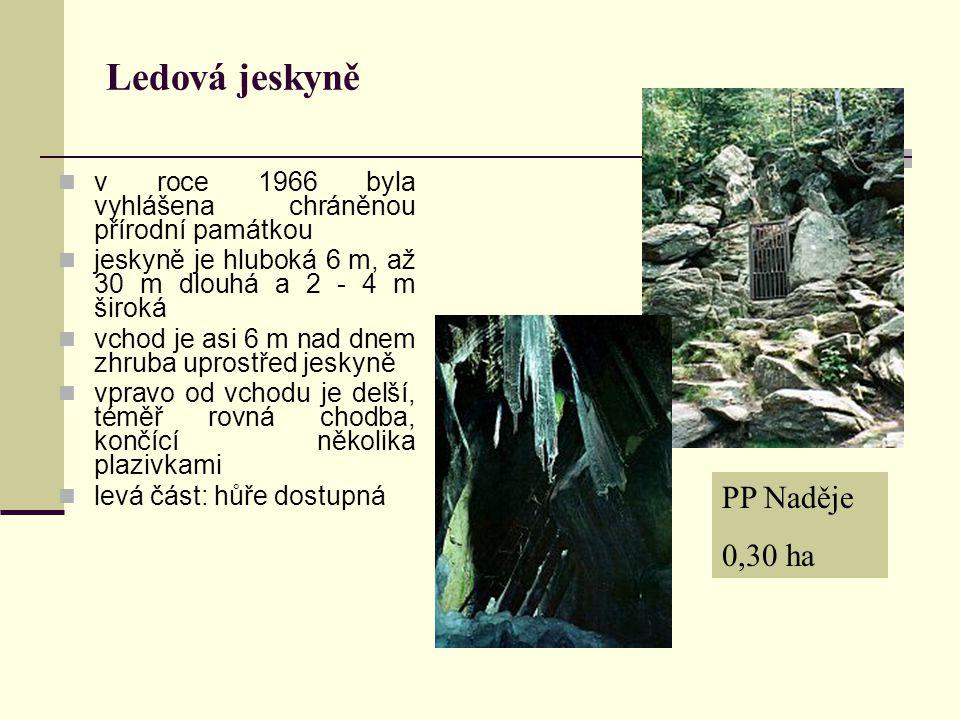 Ledová jeskyně v roce 1966 byla vyhlášena chráněnou přírodní památkou jeskyně je hluboká 6 m, až 30 m dlouhá a 2 - 4 m široká vchod je asi 6 m nad dne