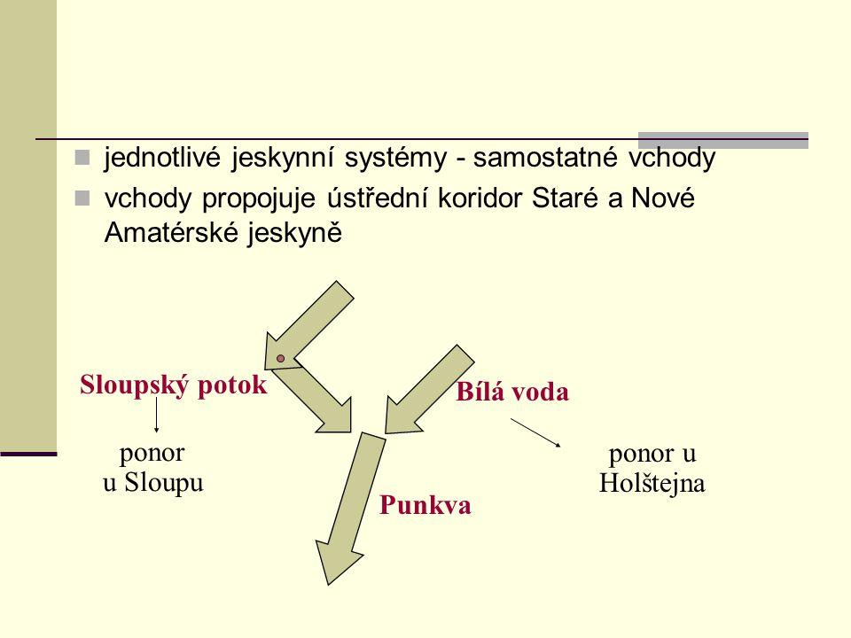 jednotlivé jeskynní systémy - samostatné vchody vchody propojuje ústřední koridor Staré a Nové Amatérské jeskyně Sloupský potok Punkva Bílá voda ponor