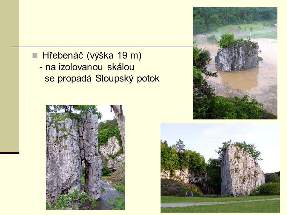 Hřebenáč (výška 19 m) - na izolovanou skálou se propadá Sloupský potok