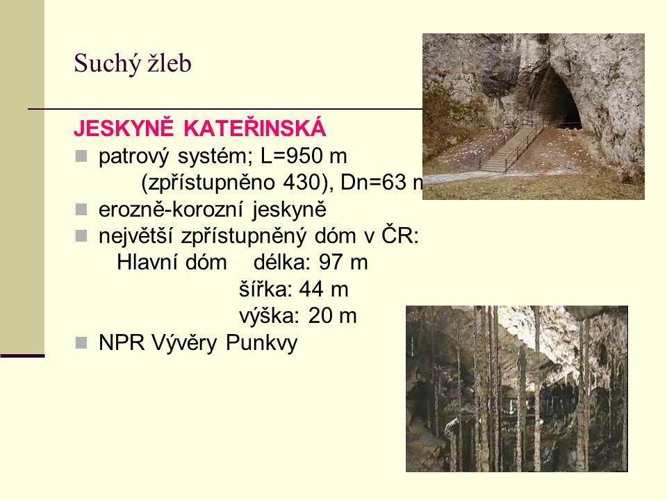 Suchý žleb JESKYNĚ KATEŘINSKÁ patrový systém; L=950 m (zpřístupněno 430), Dn=63 m erozně-korozní jeskyně největší zpřístupněný dóm v ČR: Hlavní dóm dé