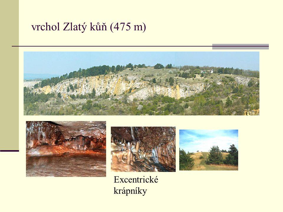 vrchol Zlatý kůň (475 m) Excentrické krápníky