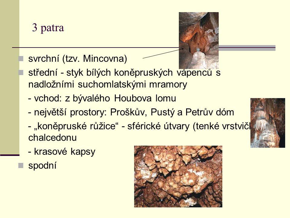 3 patra svrchní (tzv. Mincovna) střední - styk bílých koněpruských vápenců s nadložními suchomlatskými mramory - vchod: z bývalého Houbova lomu - nejv