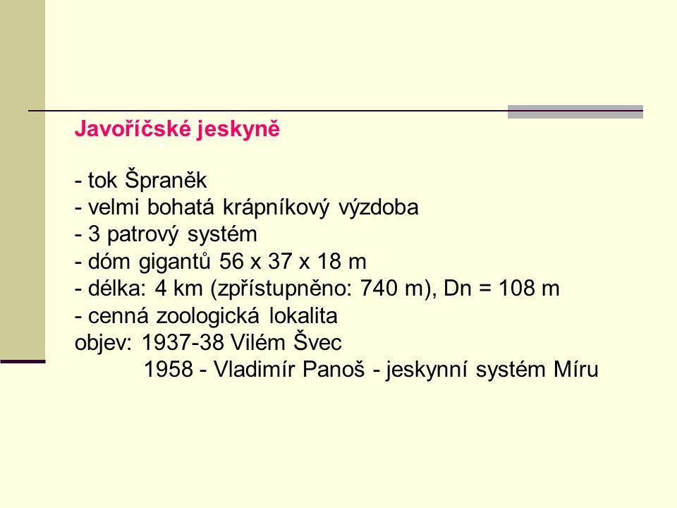 Javoříčské jeskyně - tok Špraněk - velmi bohatá krápníkový výzdoba - 3 patrový systém - dóm gigantů 56 x 37 x 18 m - délka: 4 km (zpřístupněno: 740 m)