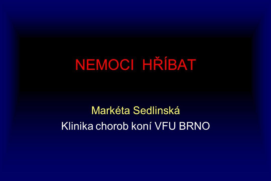 NEMOCI HŘÍBAT Markéta Sedlinská Klinika chorob koní VFU BRNO