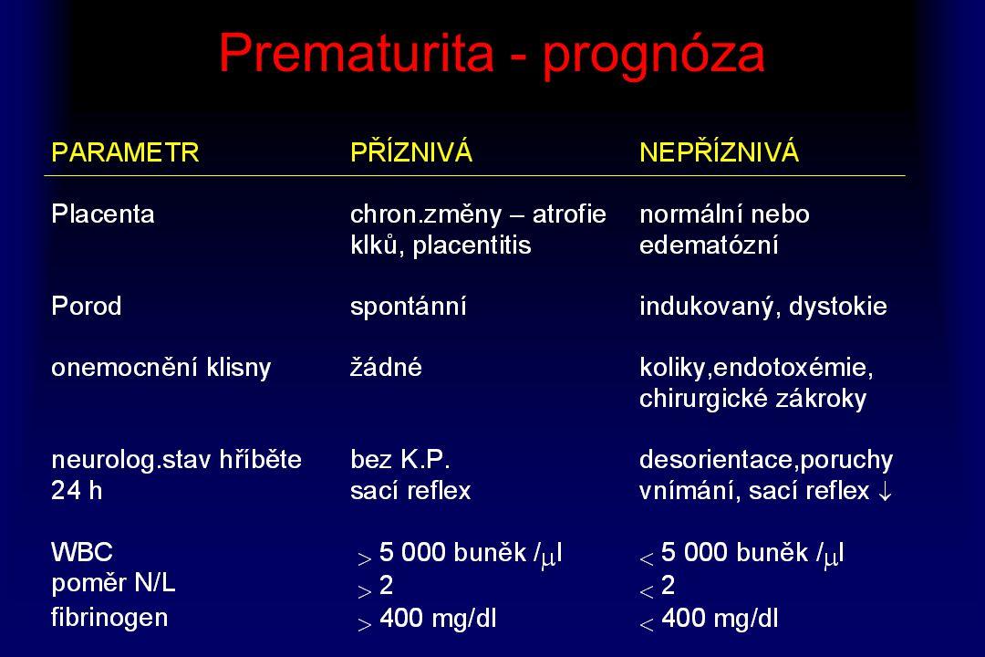 Prematurita - prognóza