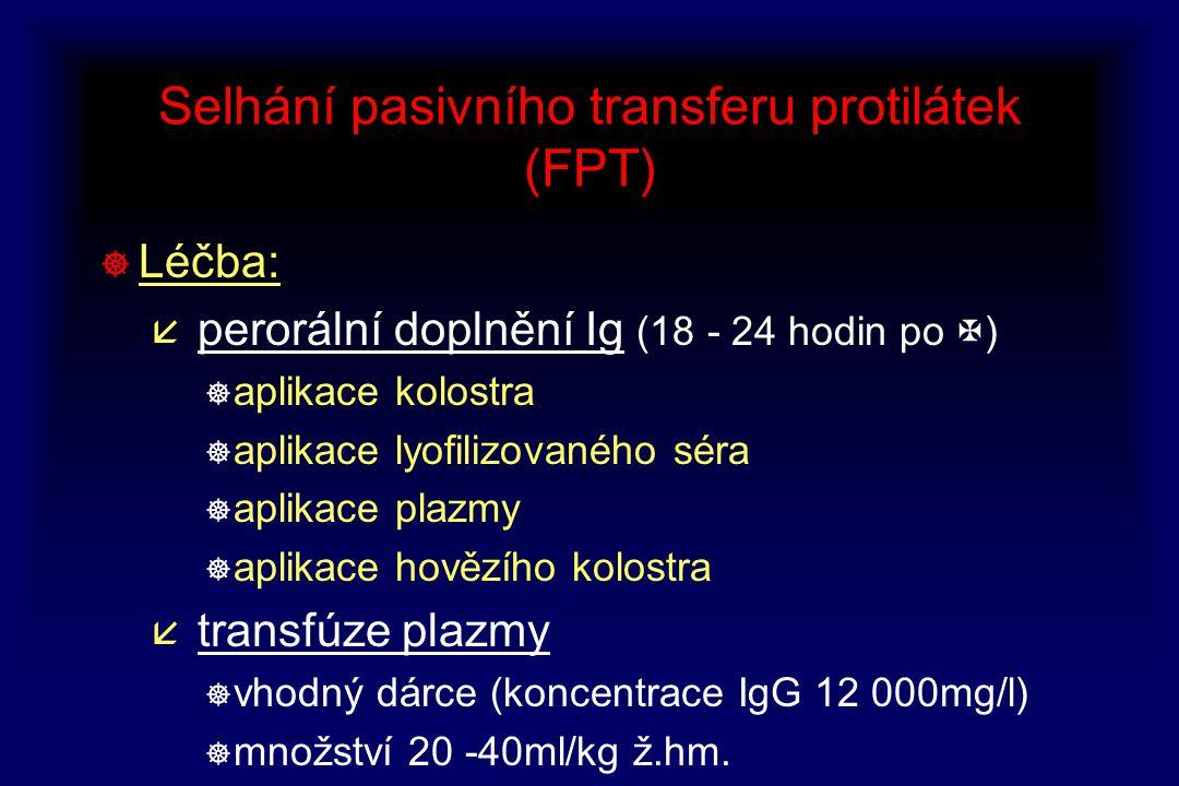 Selhání pasivního transferu protilátek (FPT) ] Léčba: å perorální doplnění Ig (18 - 24 hodin po  ) ] aplikace kolostra ] aplikace lyofilizovaného sér