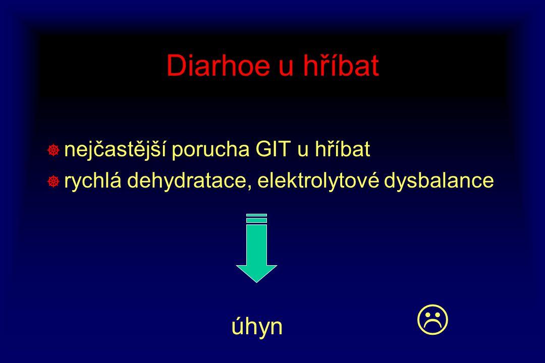 Diarhoe u hříbat ] nejčastější porucha GIT u hříbat ] rychlá dehydratace, elektrolytové dysbalance úhyn 