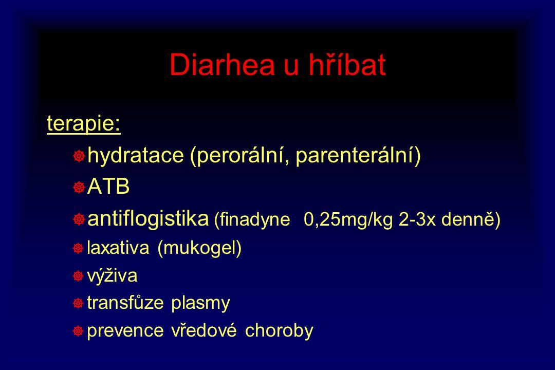Diarhea u hříbat terapie: ] hydratace (perorální, parenterální) ] ATB ] antiflogistika (finadyne 0,25mg/kg 2-3x denně) ] laxativa (mukogel) ] výživa ]
