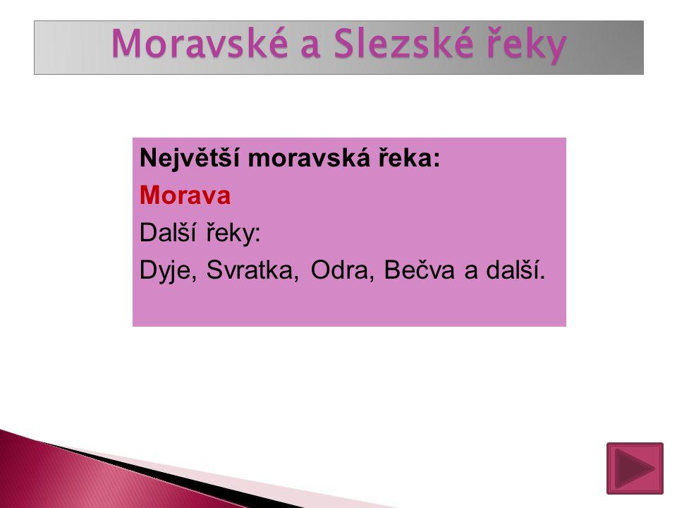 České řeky Největší česká řeka: Labe Nejdelší česká řeka: Vltava Další řeky: Lužnice, Otava, Sázava, Berounka, Jizera, Ohře, Želivka, Bílina a další.