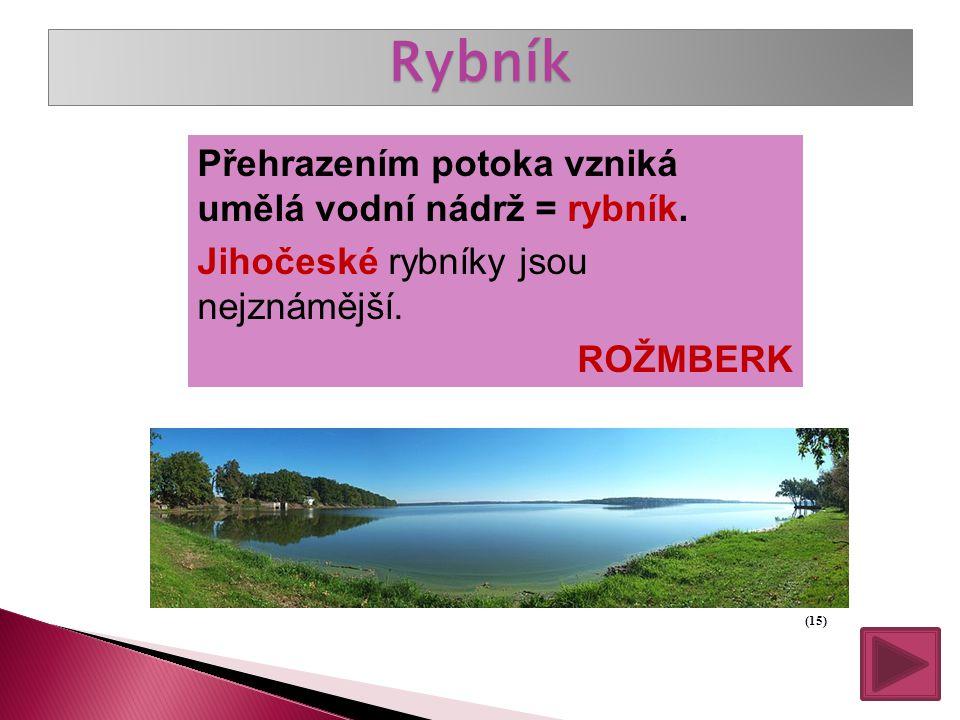 Moravské a Slezské řeky Největší moravská řeka: Morava Další řeky: Dyje, Svratka, Odra, Bečva a další.