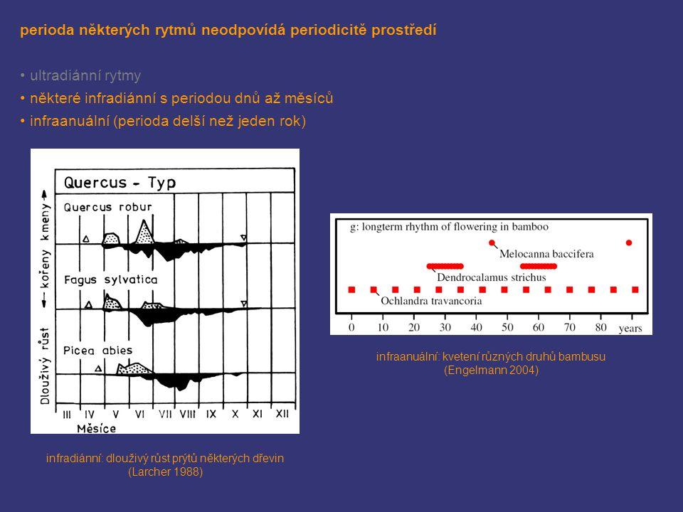 velké množství rytmů ovšem koresponduje s periodicitou prostředí v přírodě je perioda rytmu vždy shodná s délkou příslušné periody změn v prostředí ve stálých podmínkách délka periody rytmu přibližně odpovídá periodicitě prostředí rytmusanglický názevperiodicita prostředídélka periody cirkadiánní (denní) circadianden/noc24 h přílivovýtidalpříliv/odliv 12,4 h nebo 24,8 h semilunárnísemilunar maximální/minimální příliv a odliv 14,8 dnů lunárnílunarměsíční fáze29,6 dnů cirkanuální (roční) circannualroční období1 rok
