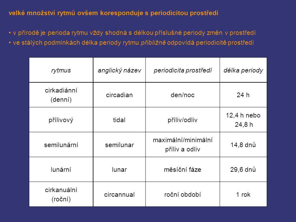 příklady rytmů korespondujících s periodicitou prostředí semilunární: produkce oocytů, hnědá řasa Dictyota dichotoma (Müller 1962) cirkanuální: prodlužovací růst chaluhy Pterygophora californica (Lüning a Kadel 1993)