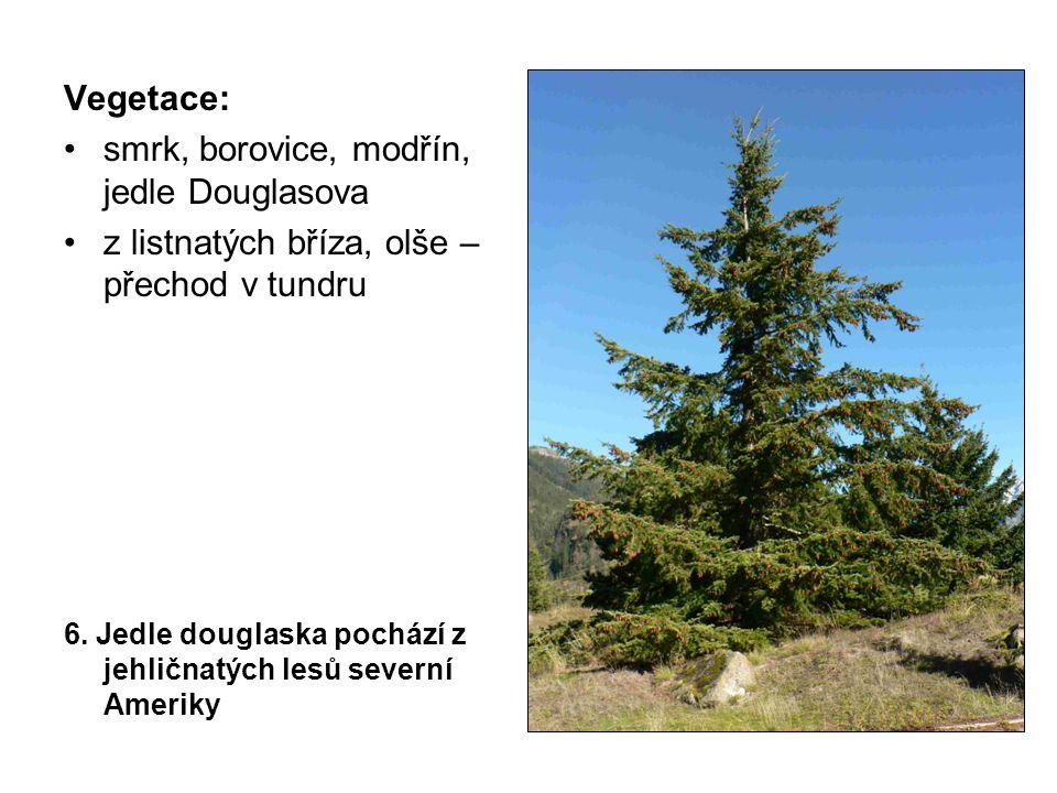 Vegetace: smrk, borovice, modřín, jedle Douglasova z listnatých bříza, olše – přechod v tundru 6.