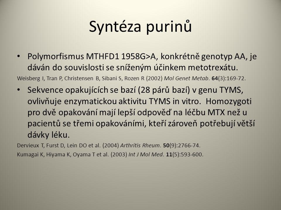 Syntéza purinů Polymorfismus MTHFD1 1958G>A, konkrétně genotyp AA, je dáván do souvislosti se sníženým účinkem metotrexátu.