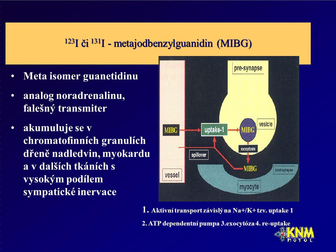 123 I či 131 I - metajodbenzylguanidin (MIBG) Meta isomer guanetidinu analog noradrenalinu, falešný transmiter akumuluje se v chromatofinních granulích dřeně nadledvin, myokardu a v dalších tkáních s vysokým podílem sympatické inervace 1.