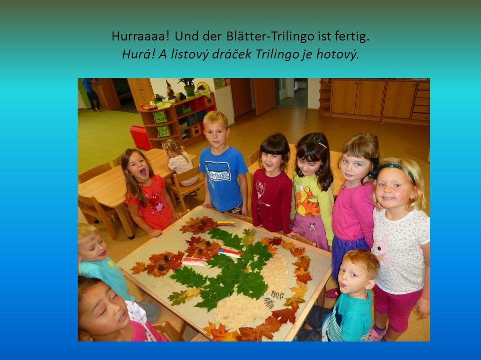 Hurraaaa! Und der Blätter-Trilingo ist fertig. Hurá! A listový dráček Trilingo je hotový.