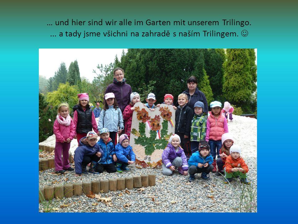 … und hier sind wir alle im Garten mit unserem Trilingo....