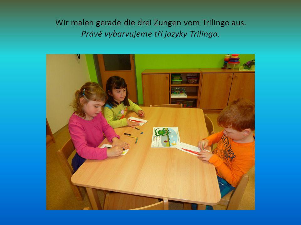 Wir malen gerade die drei Zungen vom Trilingo aus. Právě vybarvujeme tři jazyky Trilinga.