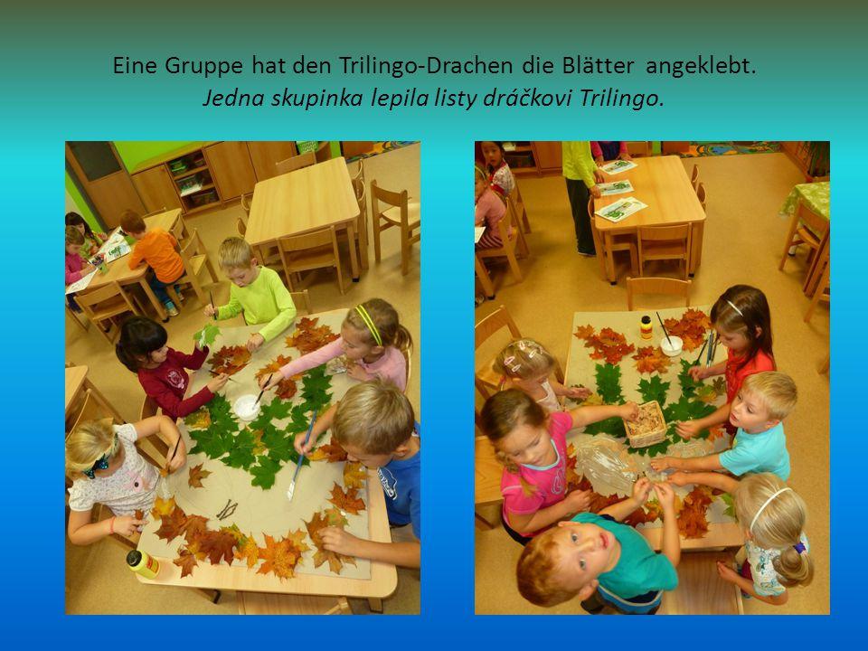 Eine Gruppe hat den Trilingo-Drachen die Blätter angeklebt.