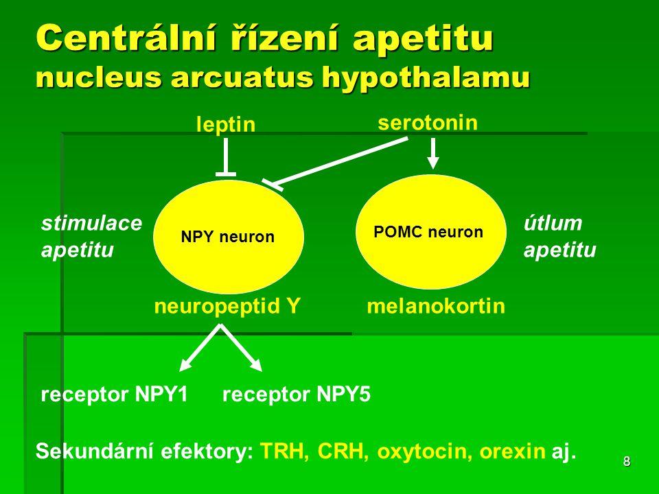 8 Centrální řízení apetitu nucleus arcuatus hypothalamu NPY neuron POMC neuron leptin serotonin neuropeptid Ymelanokortin Sekundární efektory: TRH, CRH, oxytocin, orexin aj.