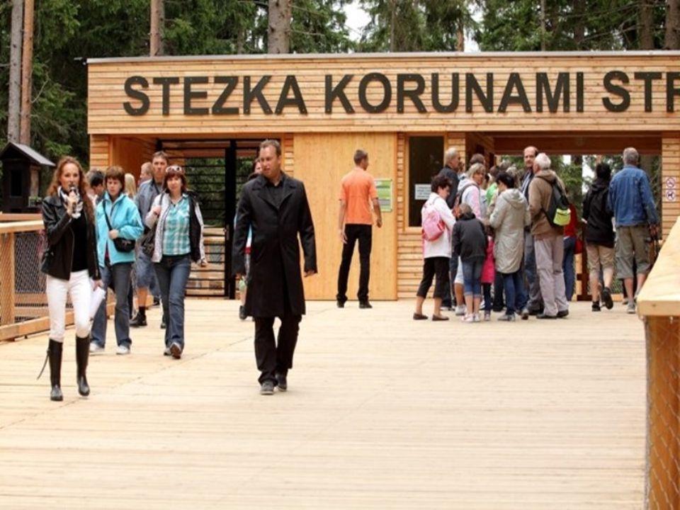 Stezka korunami stromů Lipno je první a jediná v České republice Neuvěřitelný výhled na Šumavu, didaktické interaktivní zastávky, adrenalinové sekce p