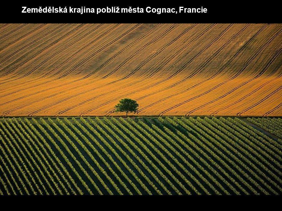 Zemědělská krajina poblíž města Cognac, Francie