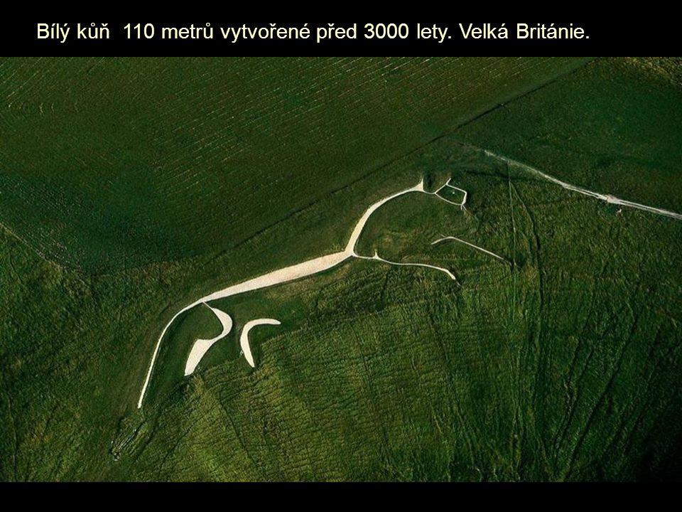 Bílý kůň 110 metrů vytvořené před 3000 lety. Velká Británie.