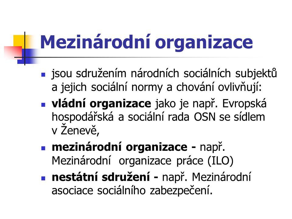 Mezinárodní organizace jsou sdružením národních sociálních subjektů a jejich sociální normy a chování ovlivňují: vládní organizace jako je např. Evrop
