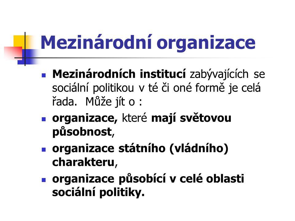 Mezinárodní organizace Mezinárodních institucí zabývajících se sociální politikou v té či oné formě je celá řada. Může jít o : organizace, které mají