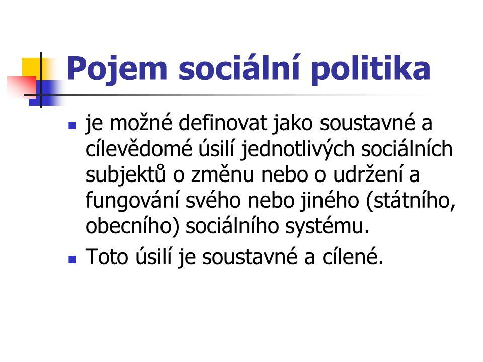 Pojem sociální politika je možné definovat jako soustavné a cílevědomé úsilí jednotlivých sociálních subjektů o změnu nebo o udržení a fungování svého