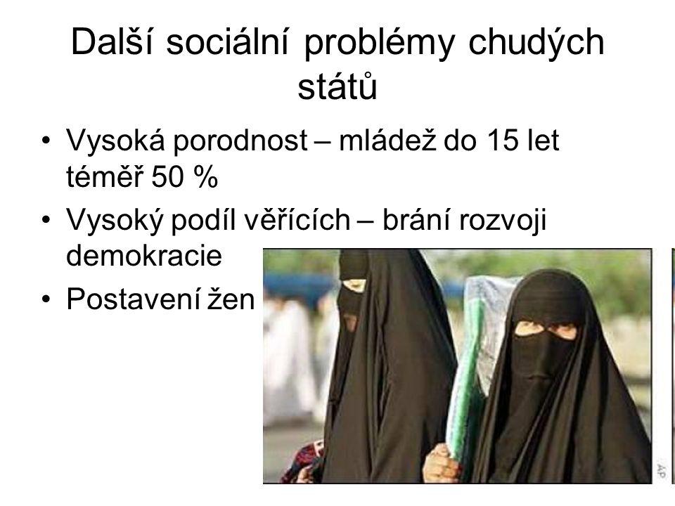 Další sociální problémy chudých států Vysoká porodnost – mládež do 15 let téměř 50 % Vysoký podíl věřících – brání rozvoji demokracie Postavení žen