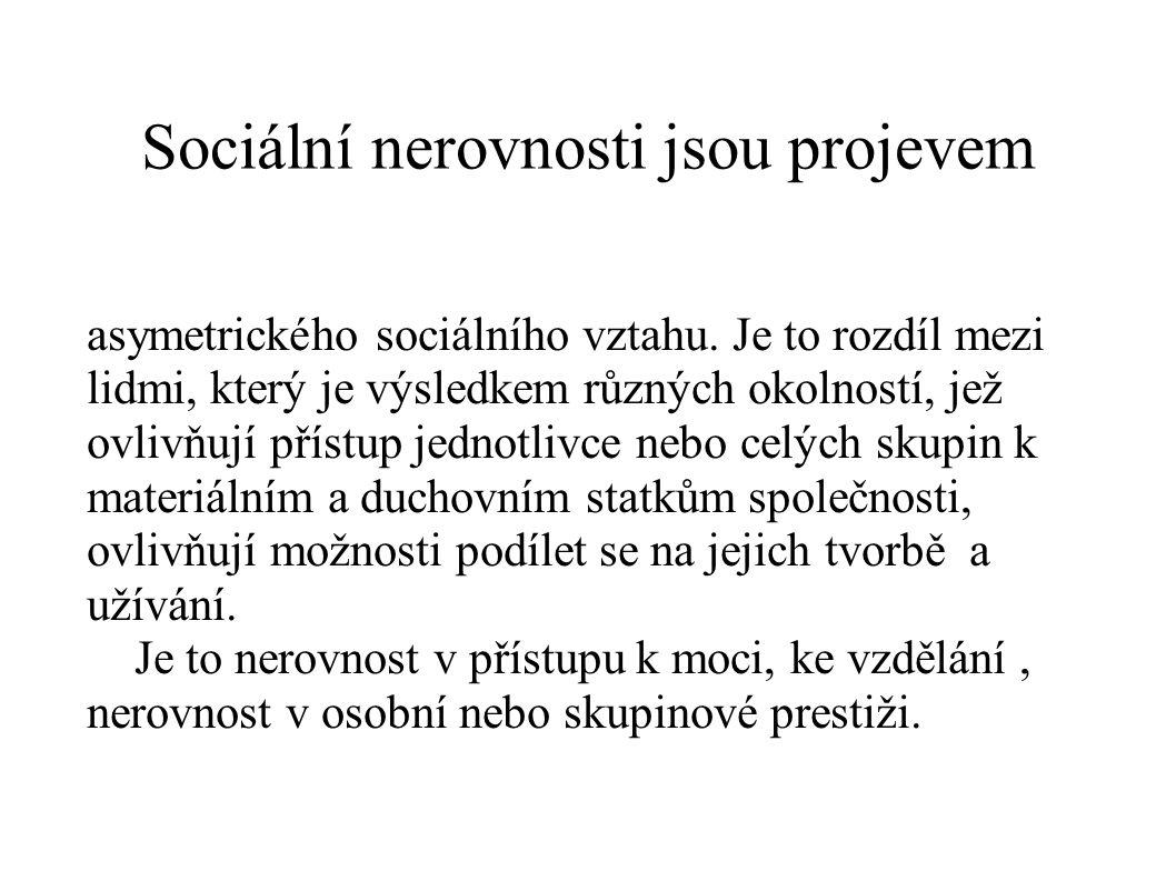 Sociální nerovnosti jsou projevem asymetrického sociálního vztahu. Je to rozdíl mezi lidmi, který je výsledkem různých okolností, jež ovlivňují přístu