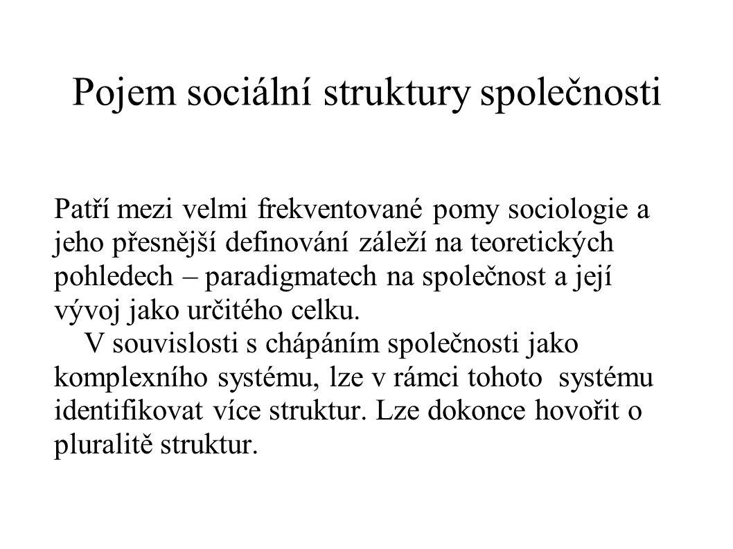 Pojem sociální struktury společnosti Patří mezi velmi frekventované pomy sociologie a jeho přesnější definování záleží na teoretických pohledech – par
