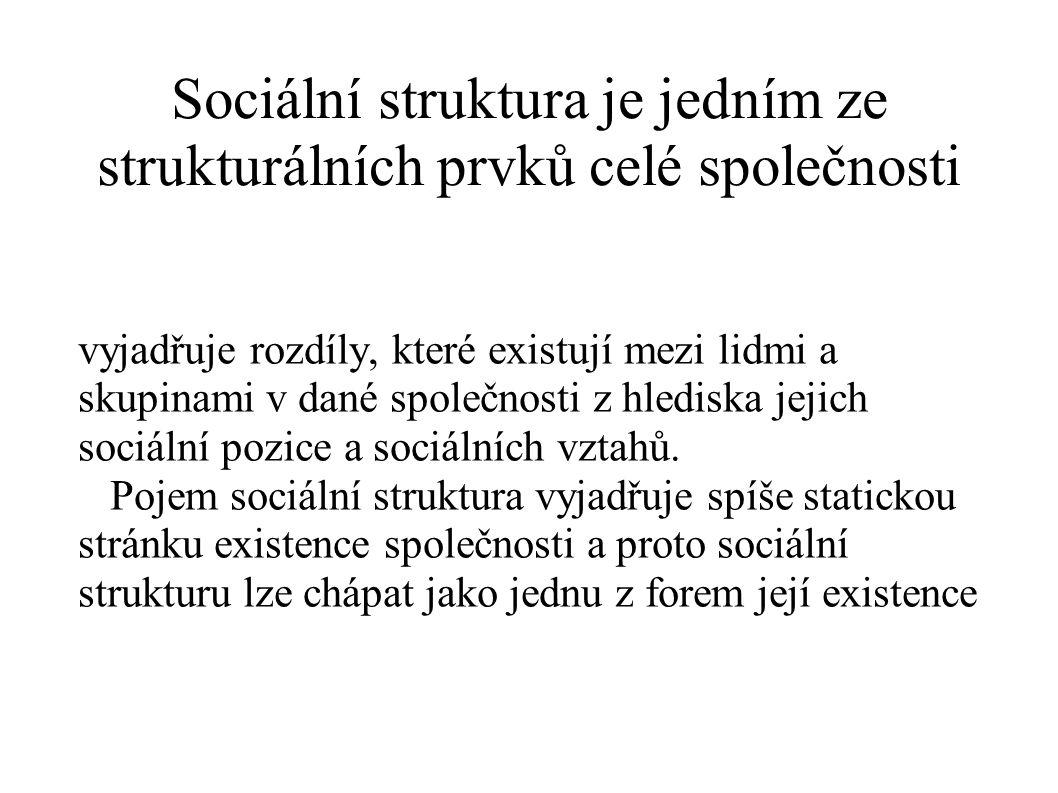 Sociální struktura je jedním ze strukturálních prvků celé společnosti vyjadřuje rozdíly, které existují mezi lidmi a skupinami v dané společnosti z hl