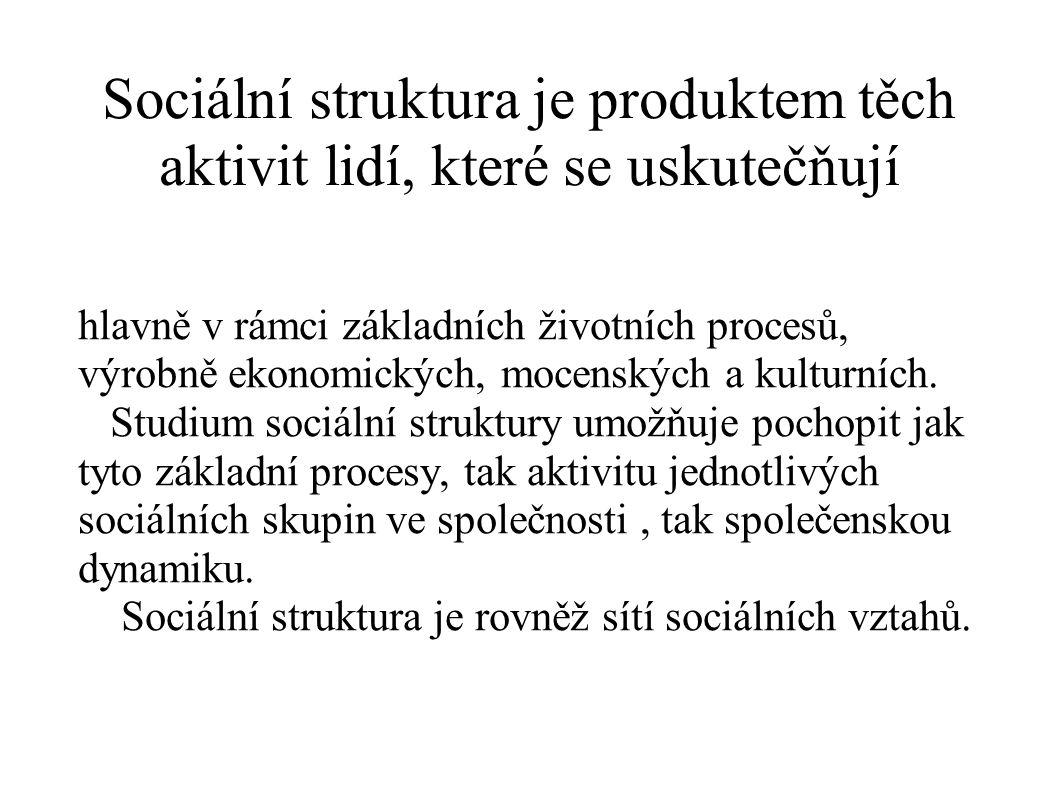 Sociální struktura je produktem těch aktivit lidí, které se uskutečňují hlavně v rámci základních životních procesů, výrobně ekonomických, mocenských