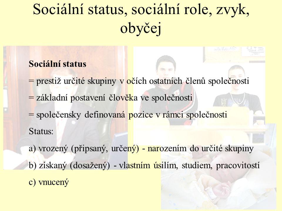Sociální status = prestiž určité skupiny v očích ostatních členů společnosti = základní postavení člověka ve společnosti = společensky definovaná pozi