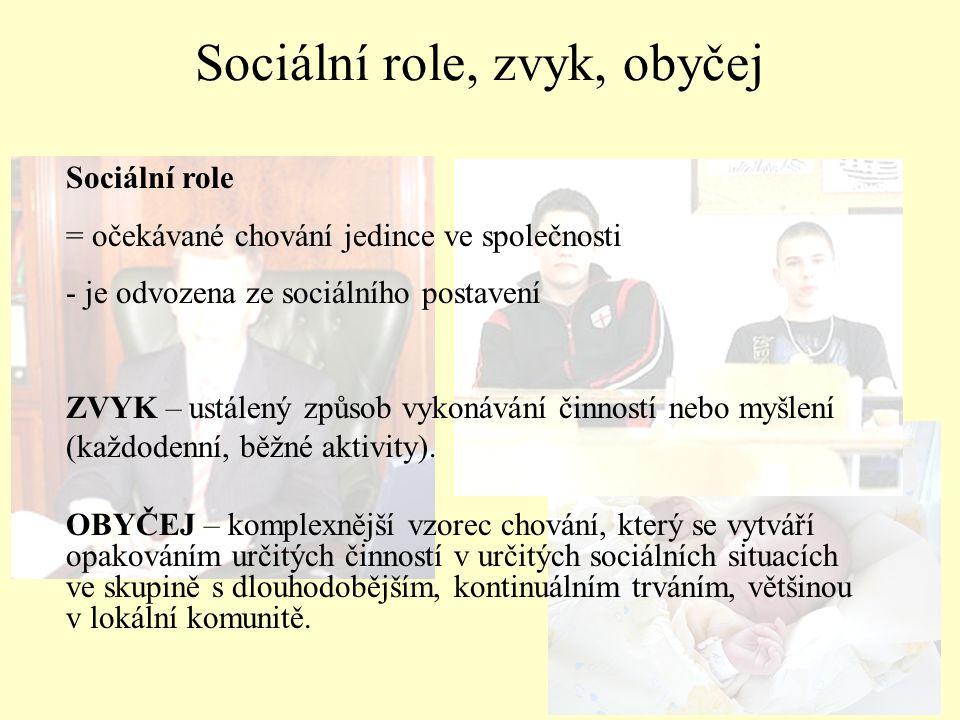 Sociální role, zvyk, obyčej Sociální role = očekávané chování jedince ve společnosti - je odvozena ze sociálního postavení ZVYK – ustálený způsob vyko