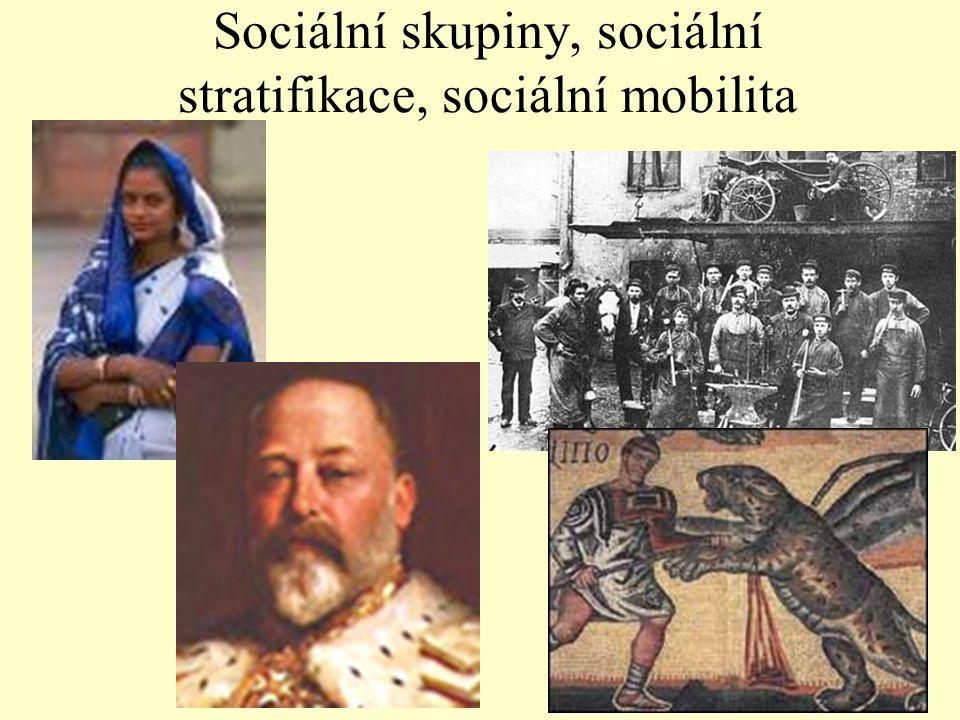 Sociální skupiny, sociální stratifikace, sociální mobilita