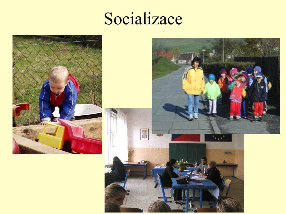 Socializace