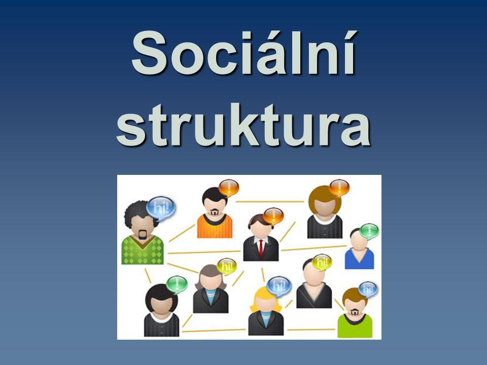 Sociální struktura