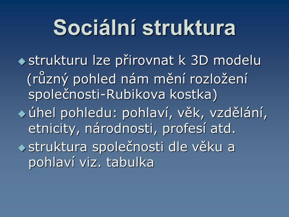 Sociální struktura  strukturu lze přirovnat k 3D modelu (různý pohled nám mění rozložení společnosti-Rubikova kostka) (různý pohled nám mění rozložen